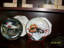 2 Cat Nap Collector plates in styrofoam Limited ed in Naperville, Illinois